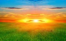 Groen gebied en mooie zonsondergang Royalty-vrije Stock Afbeeldingen
