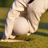 Groen gebied en witte golfbal sanset Stock Afbeeldingen