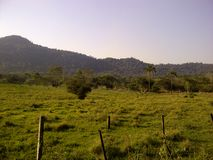 Groen gebied met bergen op het horizon, natuurlijke en warme milieu Stock Foto