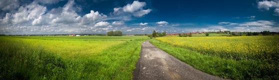 Groen gebied met blauwe hemel boven panorama Royalty-vrije Stock Afbeeldingen