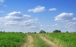 Groen gebied met weg Royalty-vrije Stock Afbeeldingen