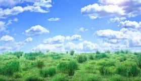 Groen gebied onder blauwe hemel met wolken Stock Afbeeldingen