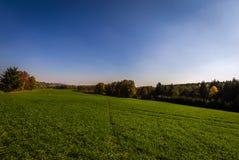 Groen gebied op de rand van bos met diepe blauwe hemel dichtbij Hamry-nad Sazavou stock foto's