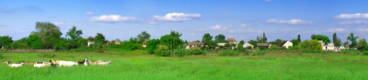 Groen gebiedspanorama Royalty-vrije Stock Foto