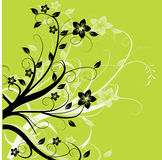 Groen gebladerte op groene achtergrond Stock Foto