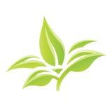 Groen Glanzend Bladerenpictogram Royalty-vrije Stock Afbeelding
