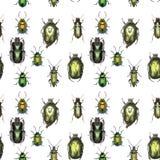 Groen Gouden Patroon Royalty-vrije Stock Afbeelding