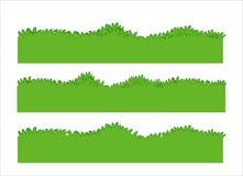Groen gras Royalty-vrije Stock Afbeelding