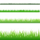 Groen Gras Backgound Stock Afbeeldingen
