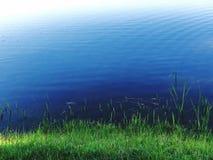 Groen gras bij oever van het meer stock fotografie