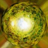 Groen gras in crytal bal Stock Foto's