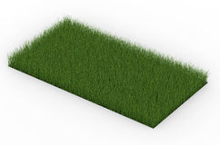 Groen gras dat op wit wordt geïsoleerdi Stock Afbeelding