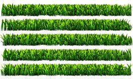 Groen gras, de transparante achtergrond van PNG Stock Afbeelding