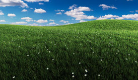Groen gras en bewolkte hemel stock illustratie