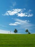 Groen gras en bewolkte hemel Stock Foto