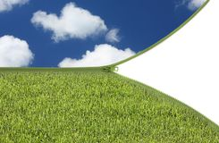 Groen gras en blauwe hemel royalty-vrije stock fotografie