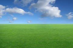 Groen gras en blauwe hemel royalty-vrije stock afbeeldingen