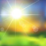 Groen gras en blauwe hemel met de uitbarsting van de de zomerzon Stock Afbeelding