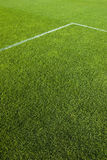 Groen Gras en de Lijn Stock Foto