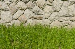 Groen gras en een steenmuur Stock Afbeelding