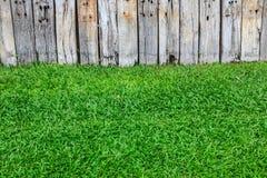Groen gras en houten muur Royalty-vrije Stock Afbeeldingen