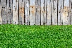 Groen gras en houten muur Royalty-vrije Stock Foto's