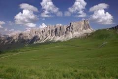 Groen gras met bergen Royalty-vrije Stock Foto
