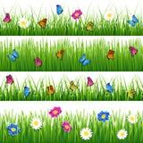 Groen gras met bloemen en vlinders Naadloze vectorreeks Royalty-vrije Stock Foto's
