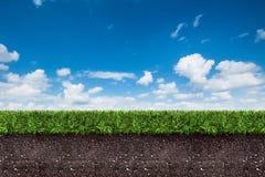 Groen gras met grond op blauwe hemel Stock Afbeeldingen