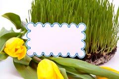 Groen gras met kaart voor tekst Stock Foto