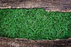 Groen gras met oud houten kader Royalty-vrije Stock Afbeeldingen