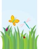 Groen gras met vlinder, libel, kever en Stock Afbeeldingen