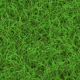Groen gras naadloos patroon Stock Afbeeldingen