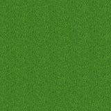 Groen gras, natuurlijke achtergrondtextuur, vers de lente groen gras Stock Foto