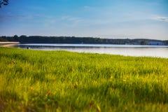 Groen gras op een achtergrond van meer Stock Afbeeldingen