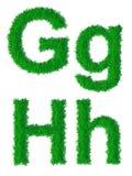 Groen grasalfabet Stock Afbeeldingen