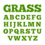 Groen grasalfabet Stock Afbeelding