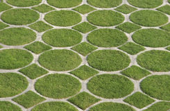 Groen grascirkel en diamantpatroon Stock Afbeeldingen