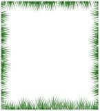 Groen grasframe dat op een witte achtergrond wordt geïsoleerde Stock Fotografie
