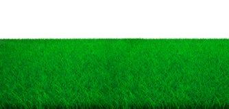 Groen grasgebied met witte achtergrond, 3D illustratie royalty-vrije stock afbeeldingen