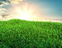 Groen grasgebied op kleine heuvels en blauwe hemel met wolken Royalty-vrije Stock Foto