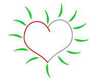 Groen hart Royalty-vrije Stock Foto
