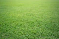 Groen het gebieds van het grasvoetbal mooi patroon als achtergrond van vers groen gras voor voetbalsport Stock Foto