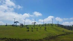 Groen in het heuvelland royalty-vrije stock fotografie