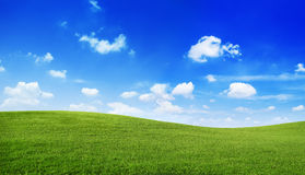 Groen het Landschapsconcept van de Heuvels Blauw Duidelijk Hemel Stock Foto