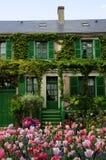 Groen huis met bloemen en installatie Royalty-vrije Stock Afbeeldingen