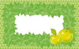 Groen kader. Stock Afbeeldingen