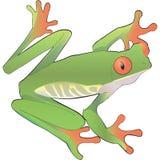 Groen kikker vectorart. Stock Foto's