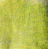 Groen kleurpotlood als achtergrond Royalty-vrije Stock Afbeeldingen