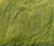 Groen kleurpotlood als achtergrond Stock Foto's